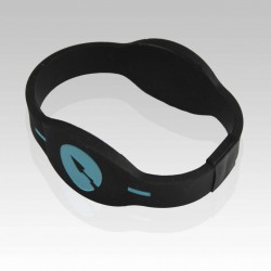 Dual RFID Bracelet for access control and payment