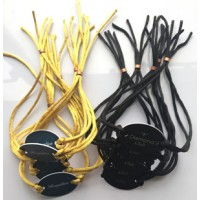 mf 1K Plastic Smart RFID Wristband for Hotel Resort